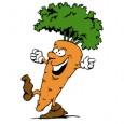 Hace poco Guru, una amiga y seguidora del blog nos envió una interesante noticia sobre las propiedades antimicrobianas de algunos compuestos de la zanahoria. Tras informarnos más sobre el tema...