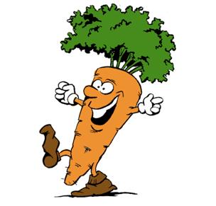 Antibacterias a base de zanahoria
