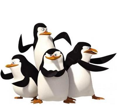 Censando pingüinos